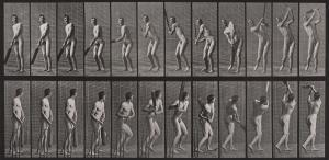 Eadweard J. Muybridge - Cricket, Batting and Drive from Animal Locomotion
