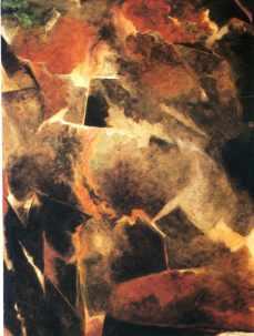 Avigdor Arikha 165