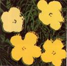 Warhol - Flowers (2)