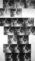 Warhol - White Car Crash